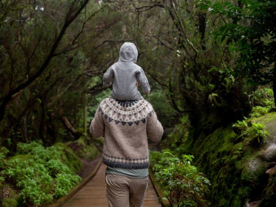 salud emocional paseo por el bosque