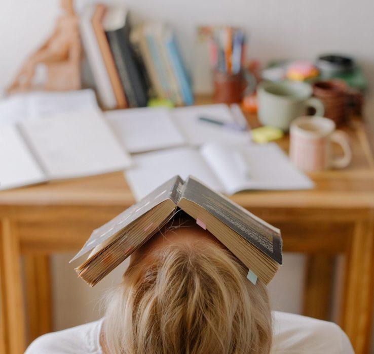 estudiar en verano